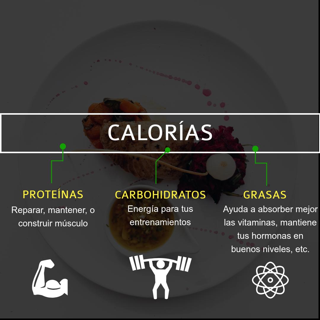 calorías-macronutrientes