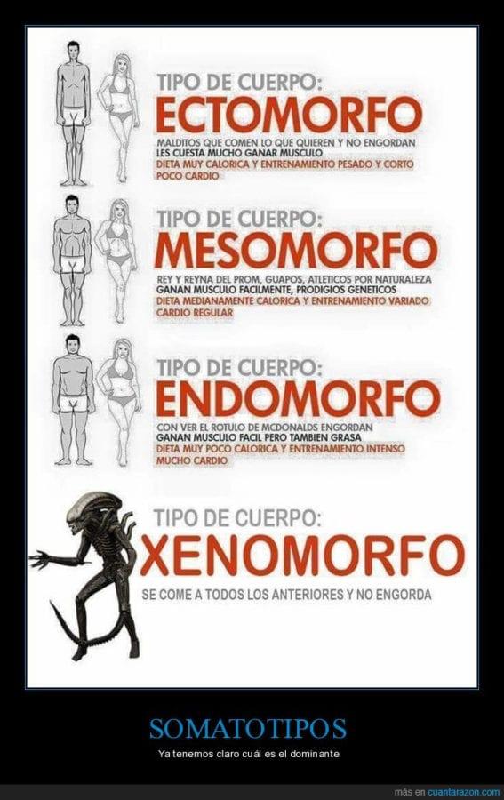 xenomorfo fitness