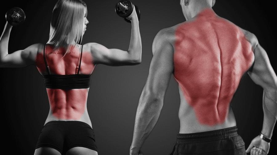 rutina espalda gym