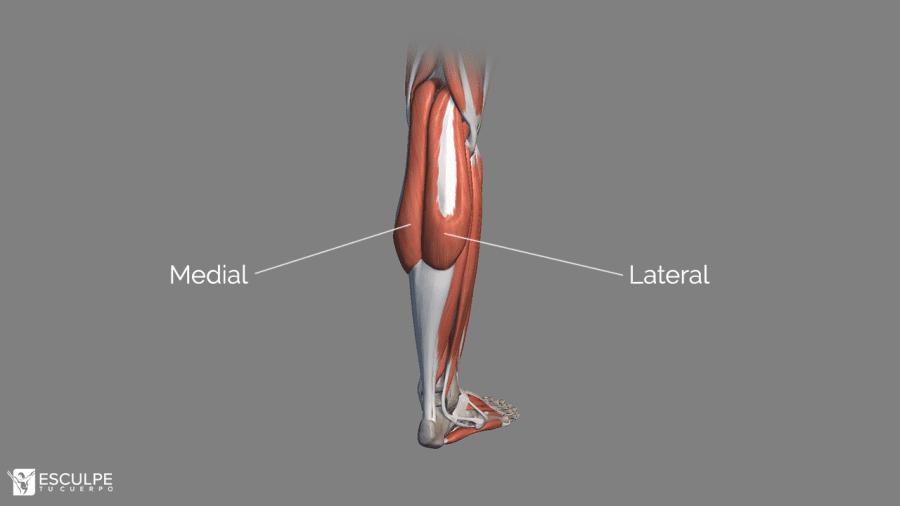pantorrillas medial y lateral