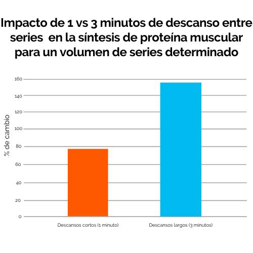 5 impacto de 1 vs 3 minutos de descanso entre series en la síntesis de proteína muscular para un volumen de series determinado